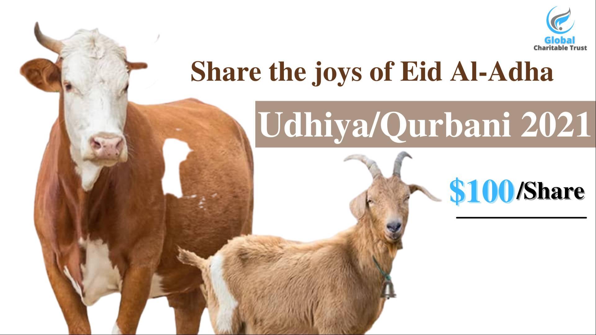Udhiya - Qurbani 2021 for Orphans, Widows and Most Needy